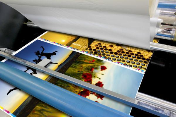 Premium-Fotodrucke